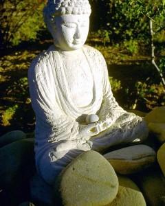 Meditation, Yoga, Qi Gong
